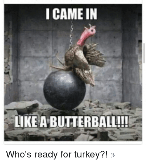 Happy Thanksgiving Turkey Meme